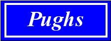 Pughs Estate Agents
